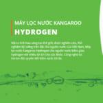 Máy lọc nước kangaroo có uống được không