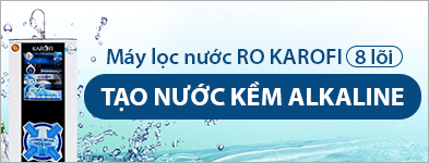 Máy lọc nước Ro 393